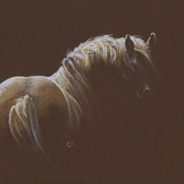 Sunhorse