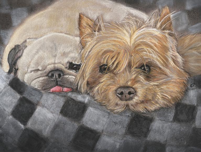 Teddy & Betty